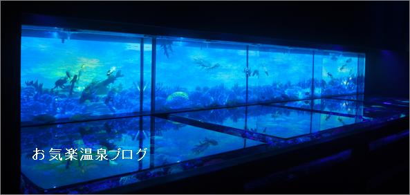 水族館,アートアクアリウム,日本橋コレド室町